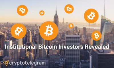 Institutinal-BTC-investors