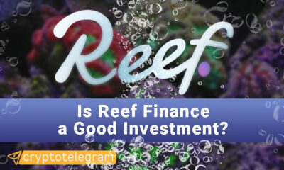 Reef Good Investment