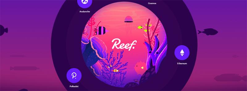 reef-crypto-explained