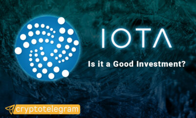 Iota Good Investment