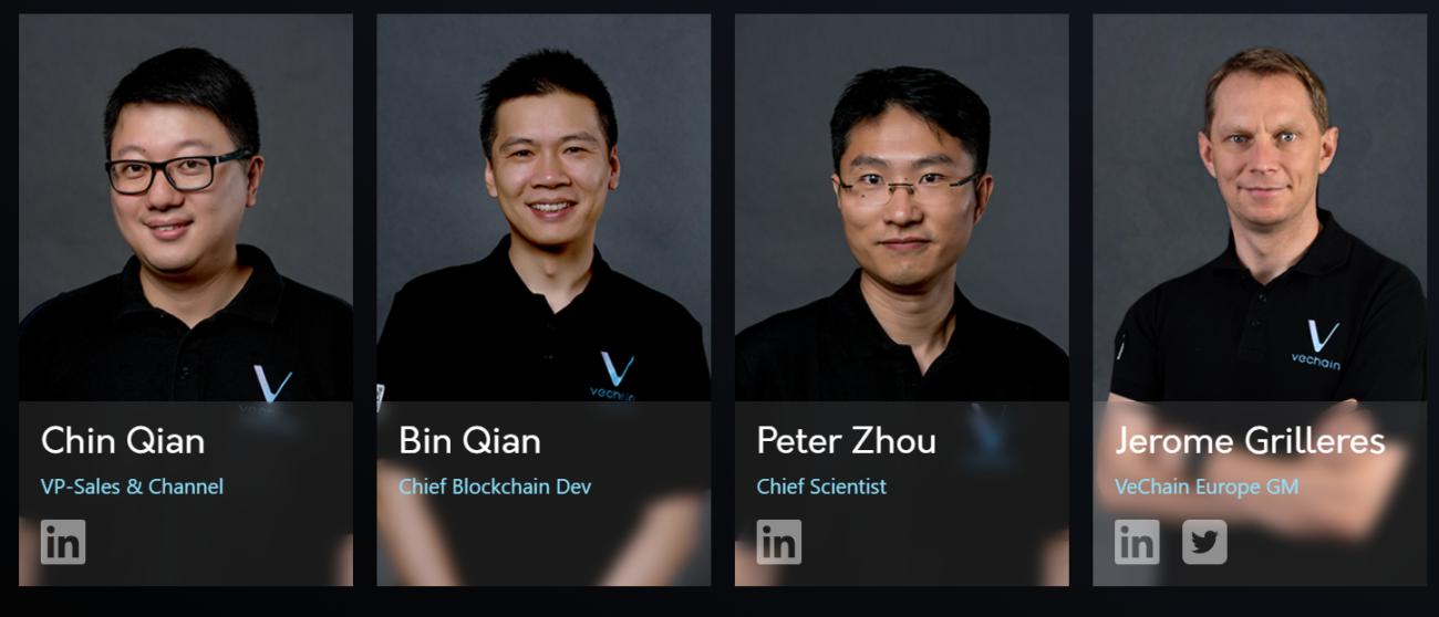 VeChain team portraits