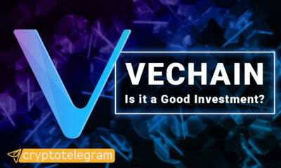 Vechain Good Investment