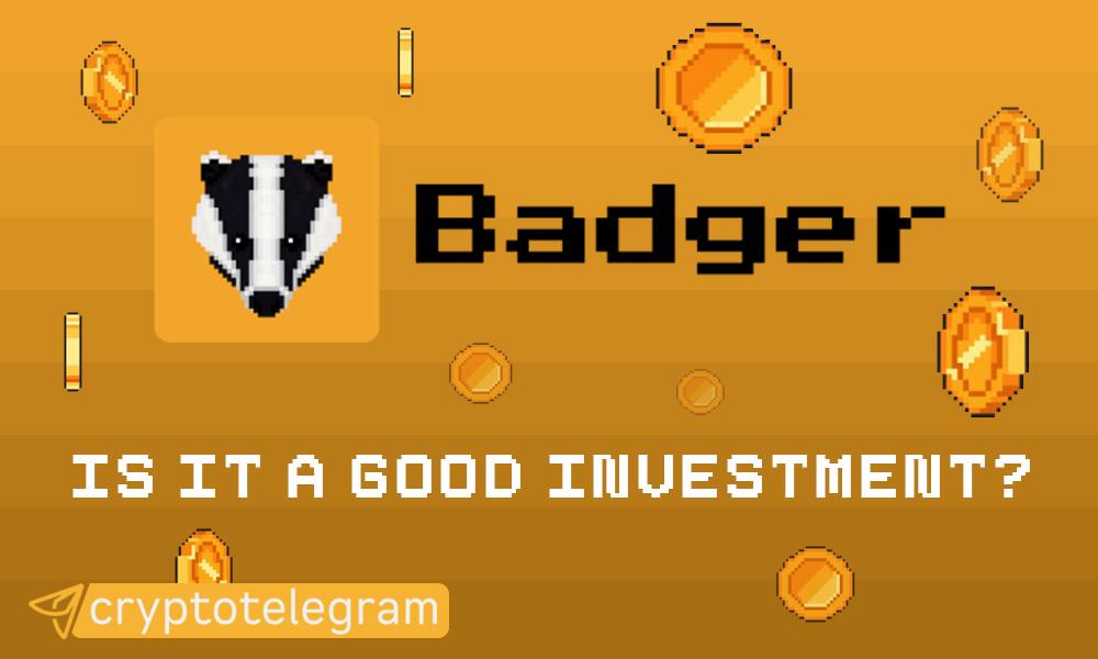 Badger Good Investment