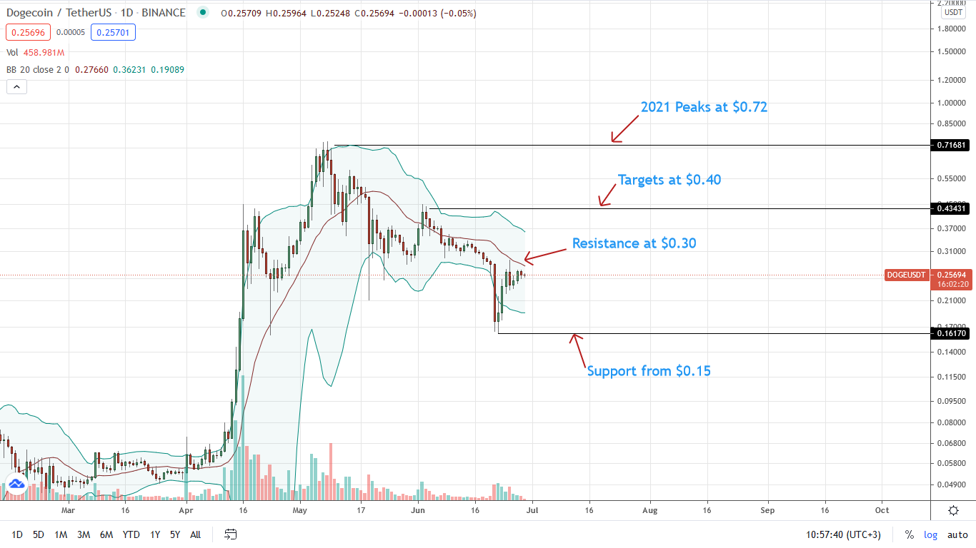 Dogecoin Price Daily Chart for June 29