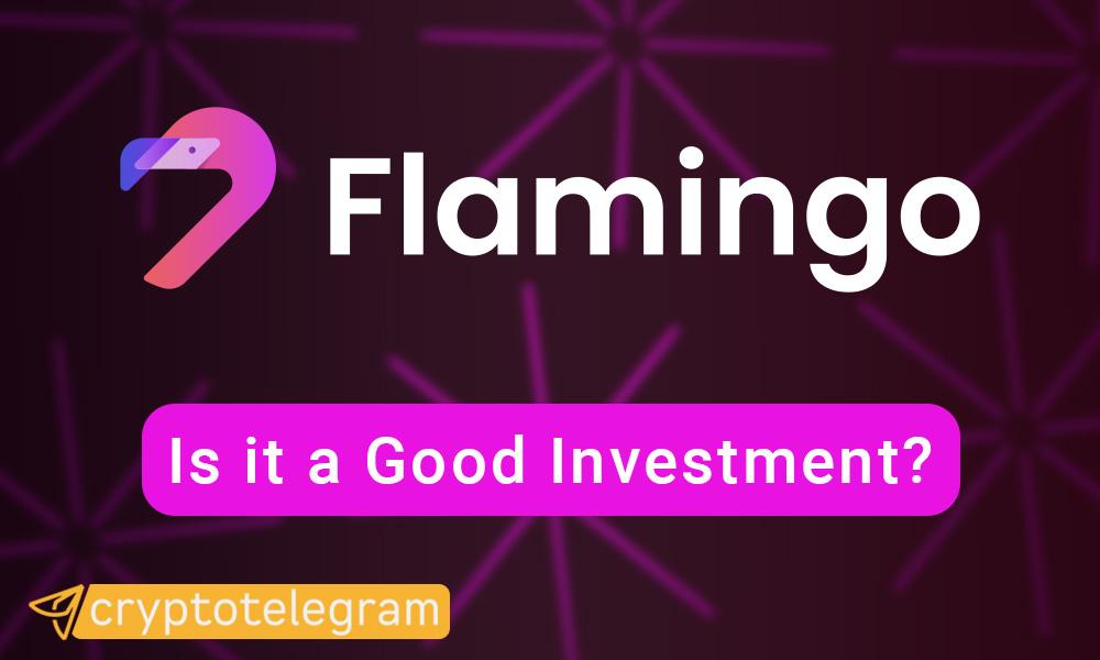 Flamingo Good Investment COVER