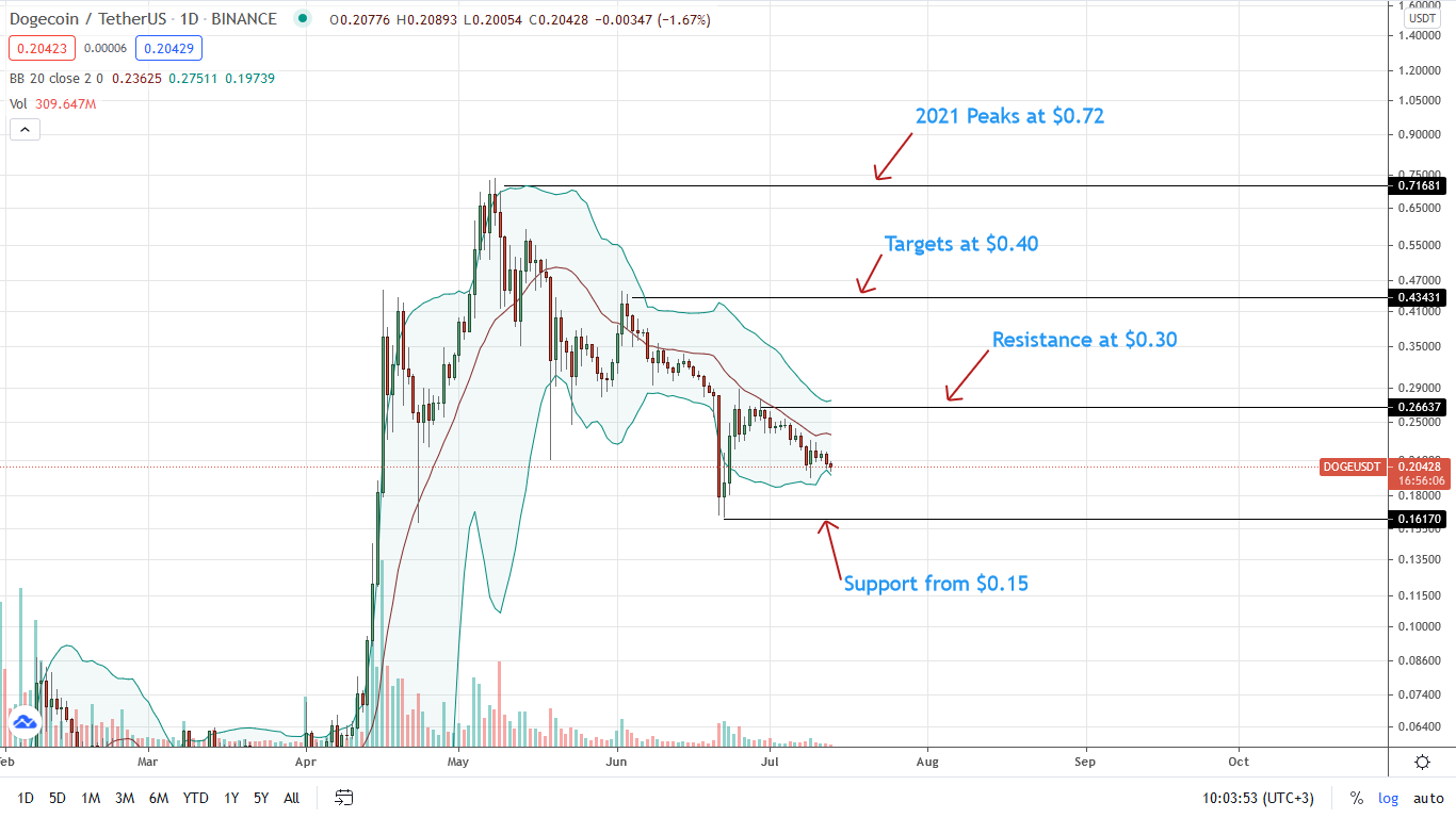 Dogecoin Price Daily Chart for July 13