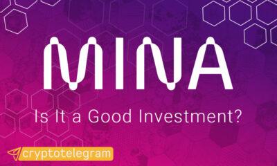 Mina Good Investment COVER