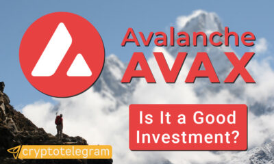AVAX Good Investment COVER