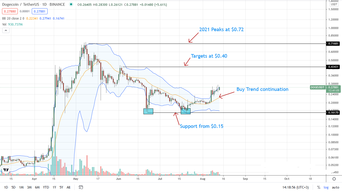 Dogecoin Price Daily Chart for Aug 13